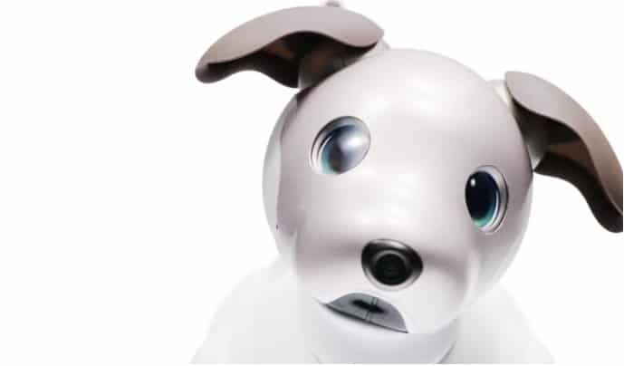 A New Recycled Packaging for aibo | Sony US
